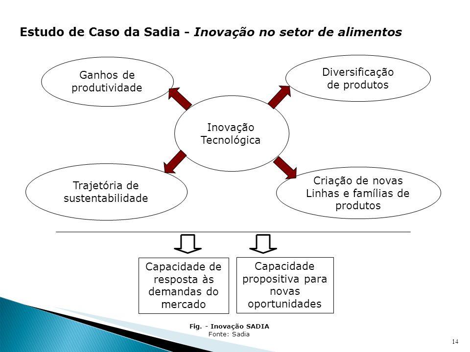 14 Inovação Tecnológica Ganhos de produtividade Diversificação de produtos Criação de novas Linhas e famílias de produtos Trajetória de sustentabilida