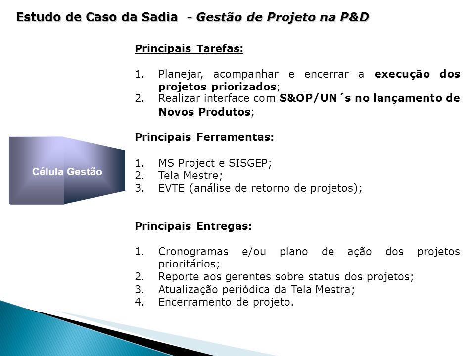 Principais Tarefas: 1.Planejar, acompanhar e encerrar a execução dos projetos priorizados; 2.Realizar interface com S&OP/UN´s no lançamento de Novos P