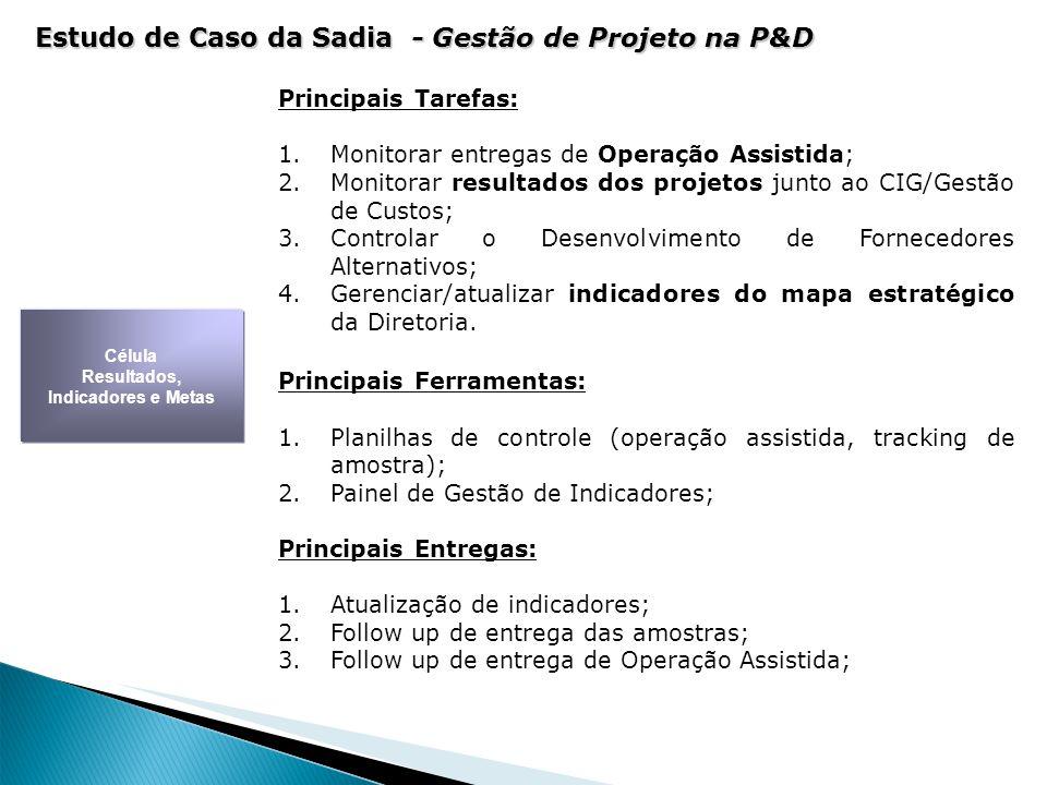 Principais Tarefas: 1.Monitorar entregas de Operação Assistida; 2.Monitorar resultados dos projetos junto ao CIG/Gestão de Custos; 3.Controlar o Desen