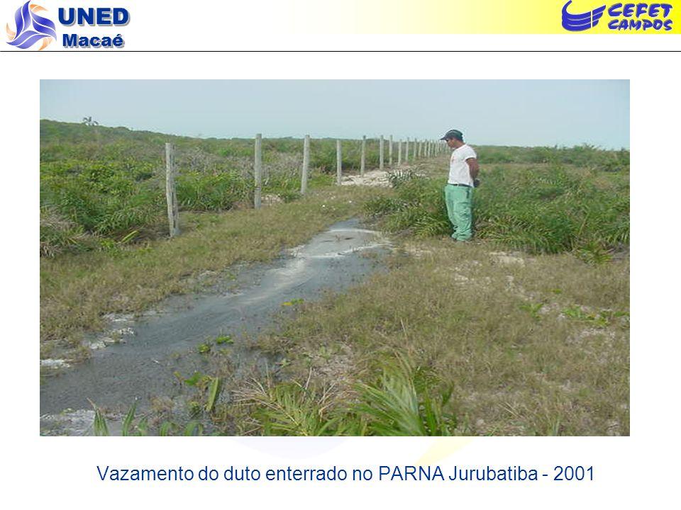 UNED Macaé Vazamento do duto enterrado no PARNA Jurubatiba - 2001