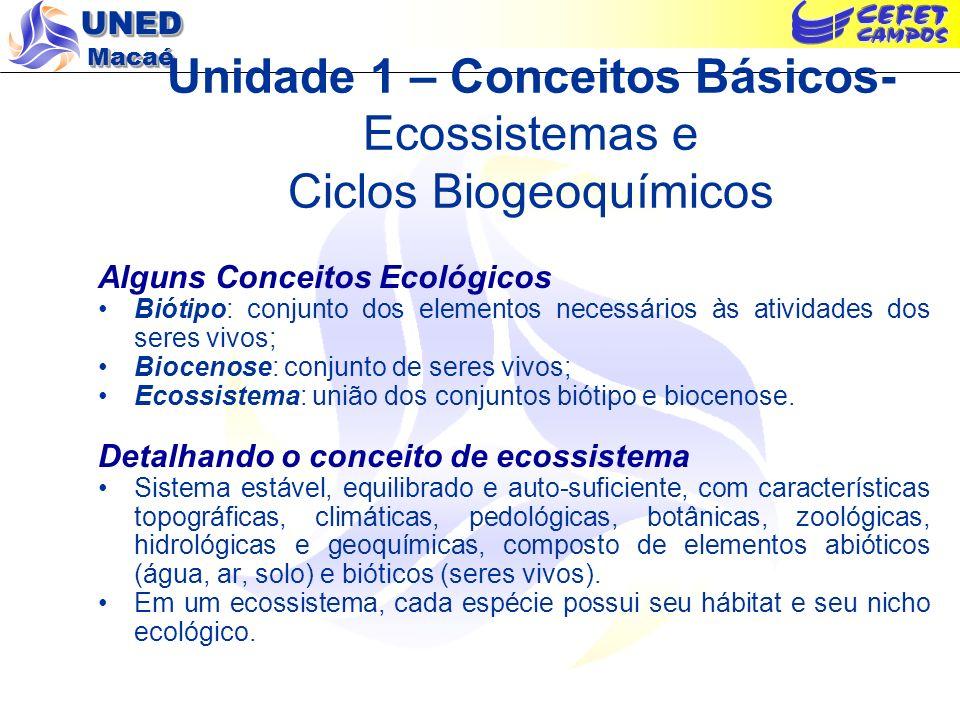UNED Macaé Reciclagem de Matéria nos Ecossistemas – Ciclos Biogeoquímicos.