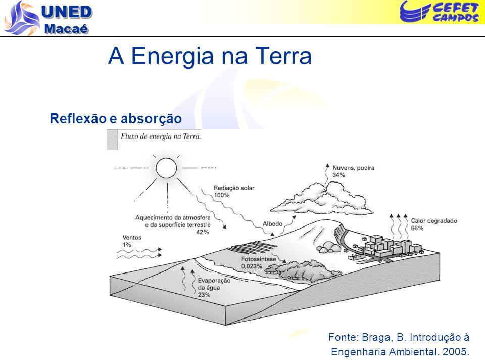UNED Macaé Reciclagem de Matéria nos Ecossistemas – Ciclos Biogeoquímicos Fonte: Braga, B.
