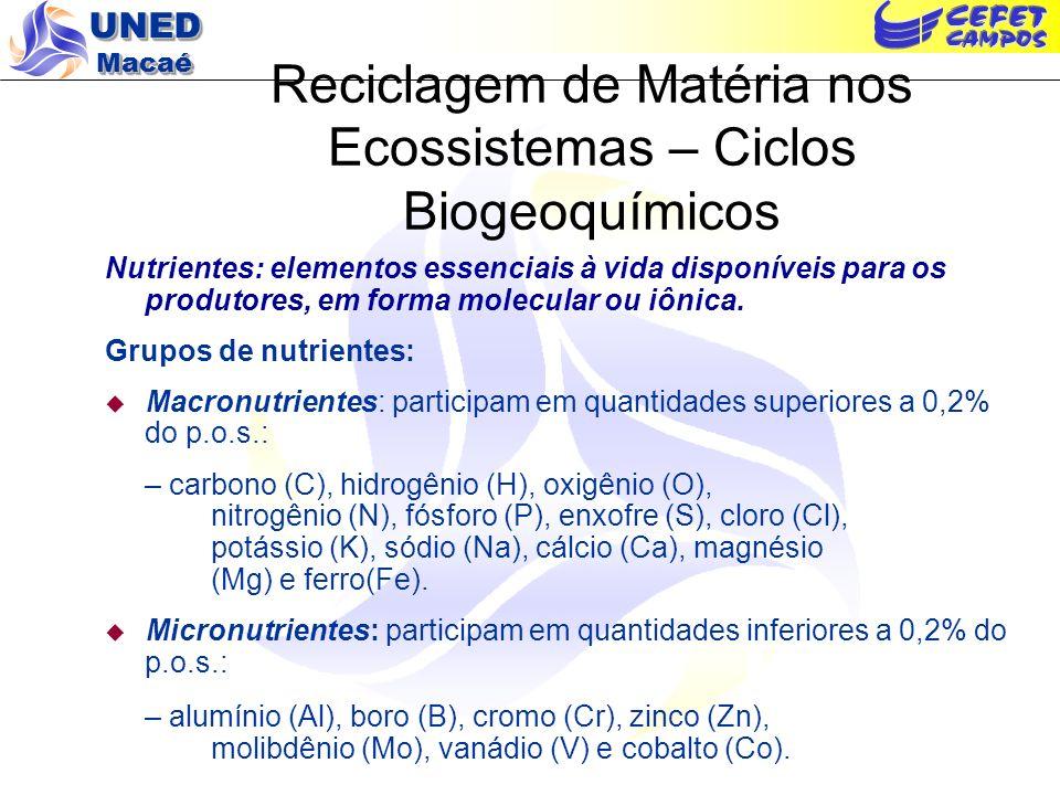 UNED Macaé Reciclagem de Matéria nos Ecossistemas – Ciclos Biogeoquímicos O Ciclo do Carbono: Fotossíntese x Respiração – Equações Simplificadas