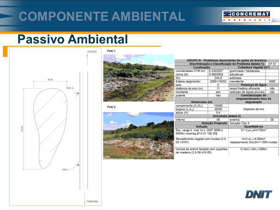 Passivo Ambiental COMPONENTE AMBIENTAL