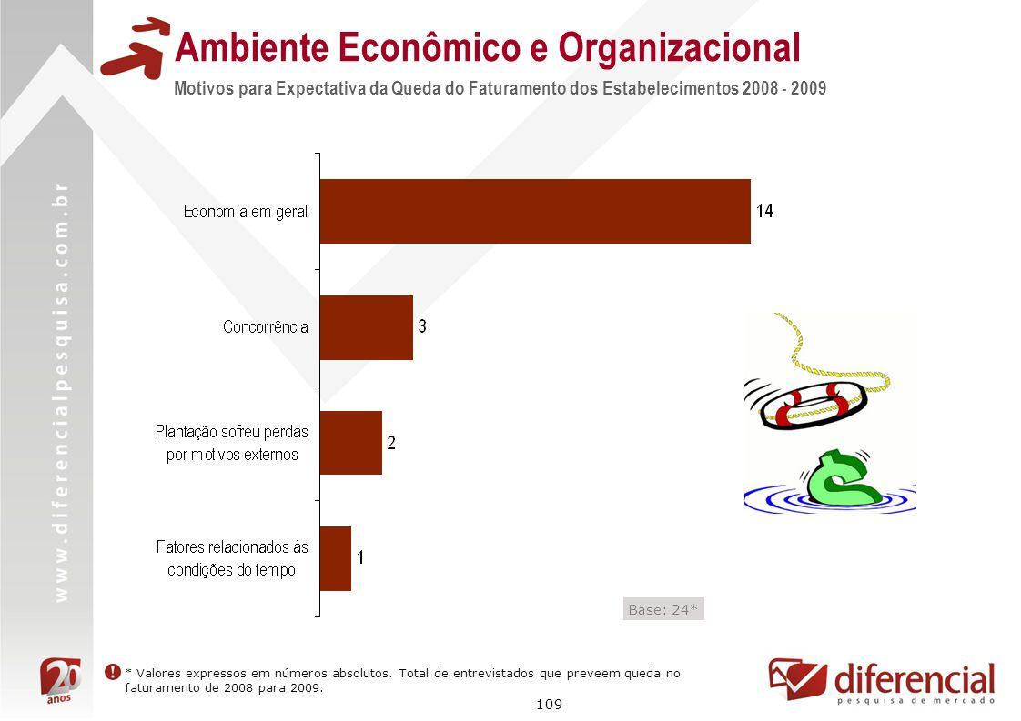 109 Ambiente Econômico e Organizacional Motivos para Expectativa da Queda do Faturamento dos Estabelecimentos 2008 - 2009 Base: 24* * Valores expresso