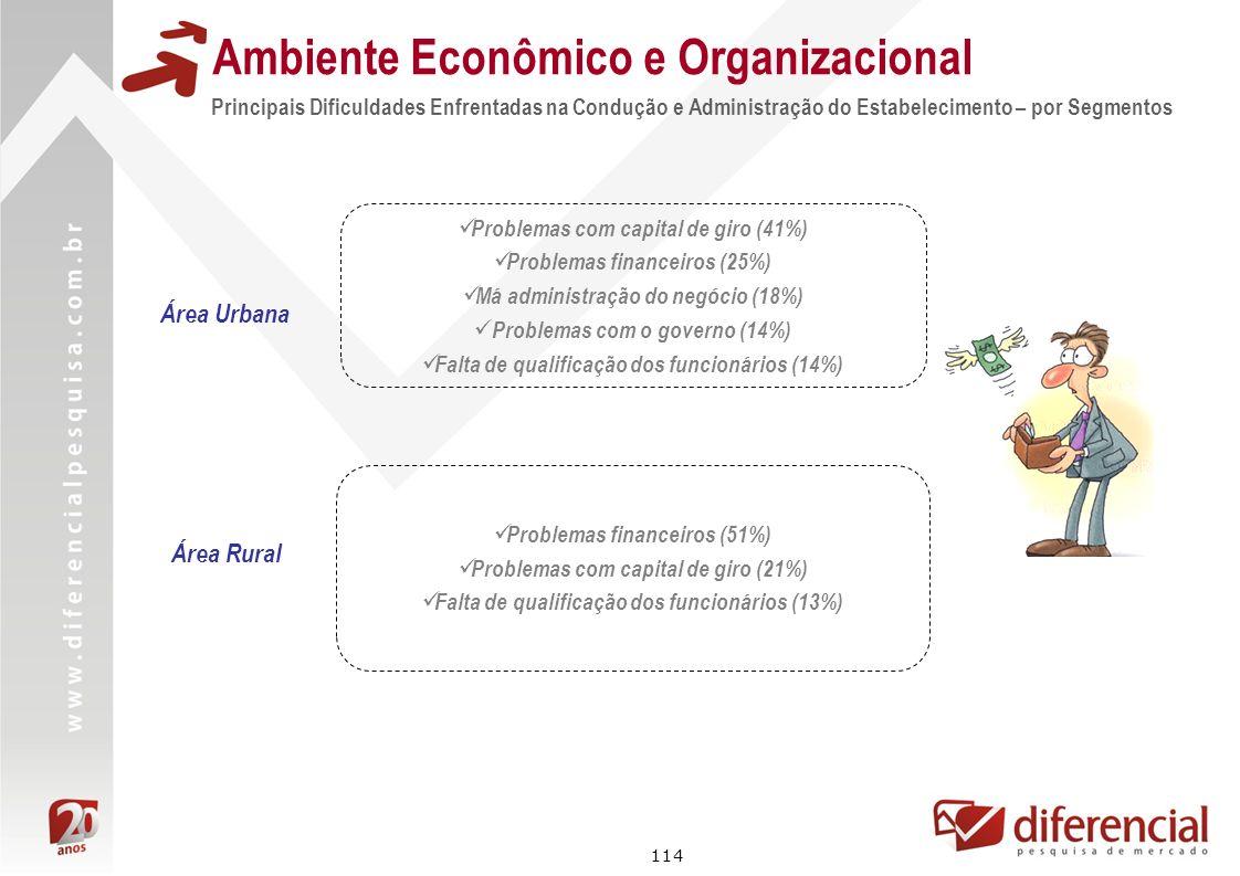 114 Principais Dificuldades Enfrentadas na Condução e Administração do Estabelecimento – por Segmentos Ambiente Econômico e Organizacional Problemas c