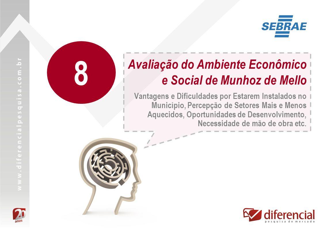 Avaliação do Ambiente Econômico e Social de Munhoz de Mello Vantagens e Dificuldades por Estarem Instalados no Município, Percepção de Setores Mais e