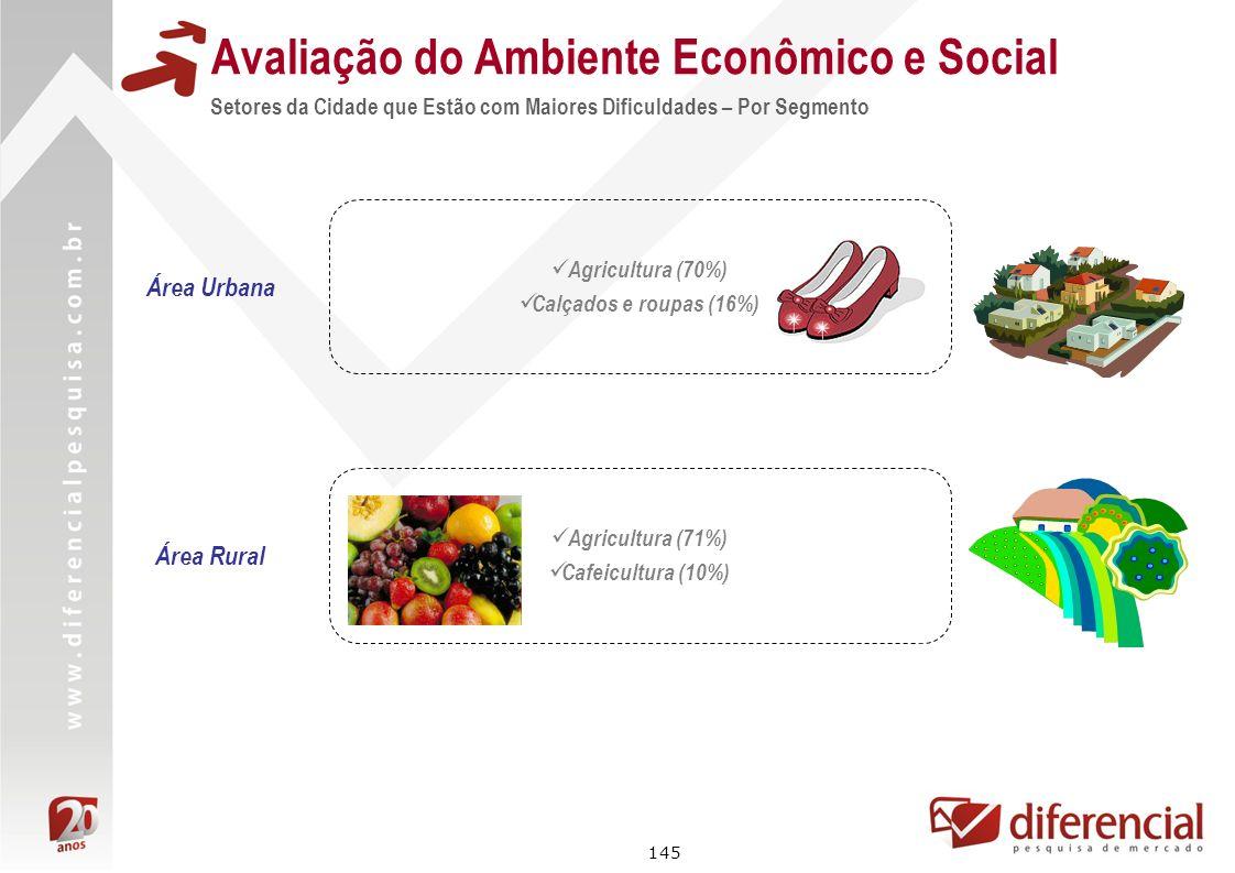 145 Avaliação do Ambiente Econômico e Social Setores da Cidade que Estão com Maiores Dificuldades – Por Segmento Área Rural Agricultura (71%) Cafeicul
