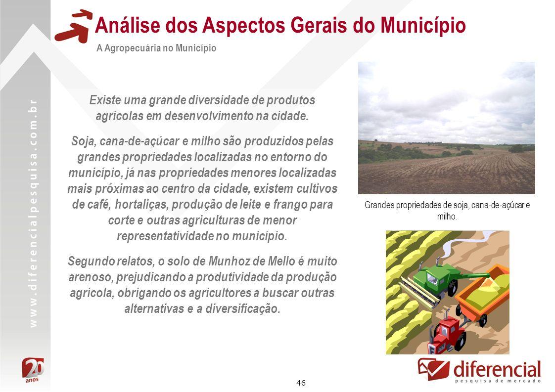 46 Análise dos Aspectos Gerais do Município A Agropecuária no Município Existe uma grande diversidade de produtos agrícolas em desenvolvimento na cida