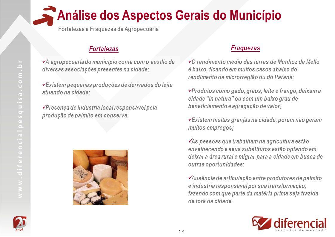 54 Análise dos Aspectos Gerais do Município A agropecuária do município conta com o auxílio de diversas associações presentes na cidade; Existem peque