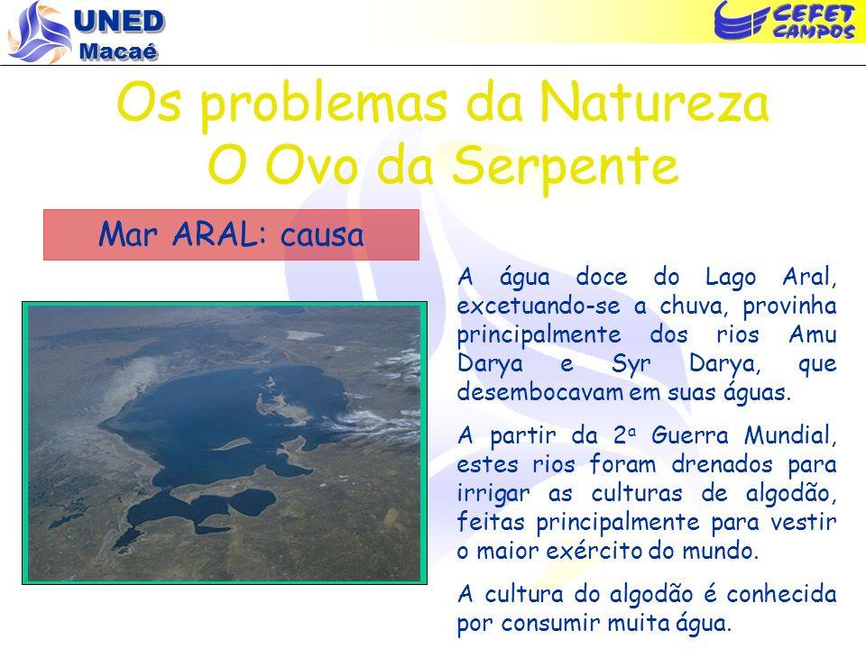 UNED Macaé Os problemas da Natureza O Ovo da Serpente Lago Vitória, África (causa) No desenvolvimento do ovo, pode-se acompanhar a lenta e inexorável evolução do que irá nascer...