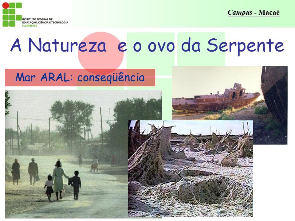 Campus - Macaé Mar ARAL: a conseqüência A superfície foi reduzida de 64.500 para 30.000 km 2, e o volume de água de 75%; Mais de 3.000 pescadores vivi