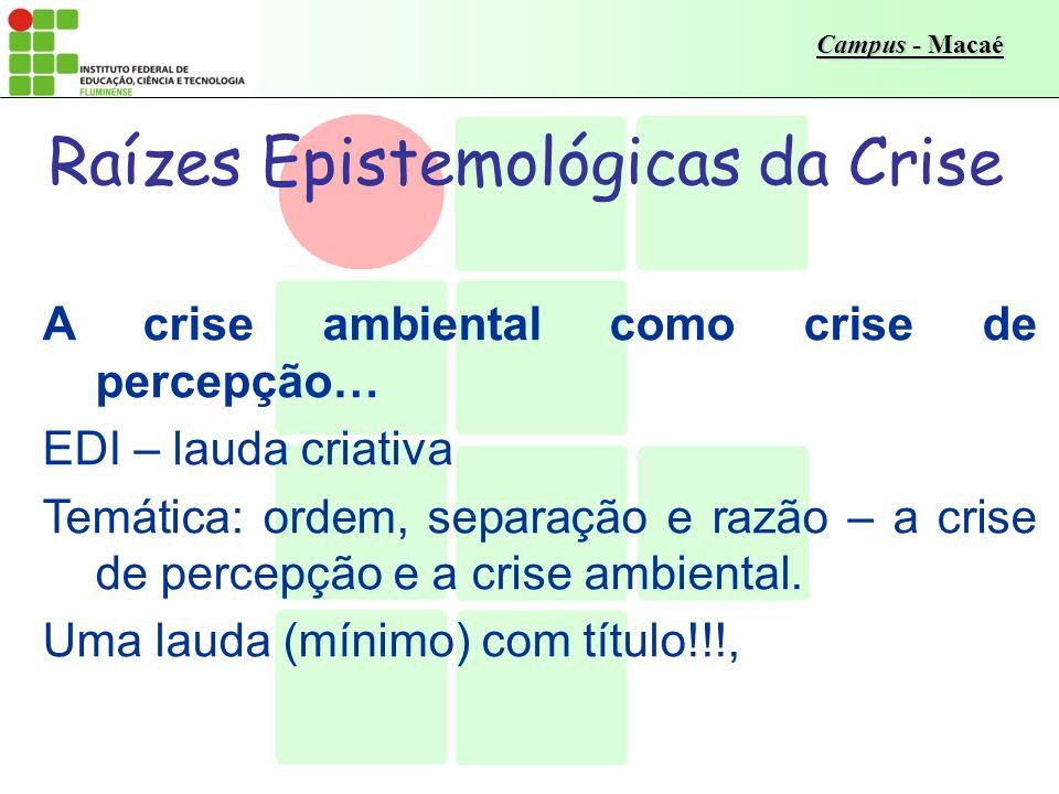 Campus - Macaé Os limites da Terra - raízes da CRISE O Sistema de Linha Reta