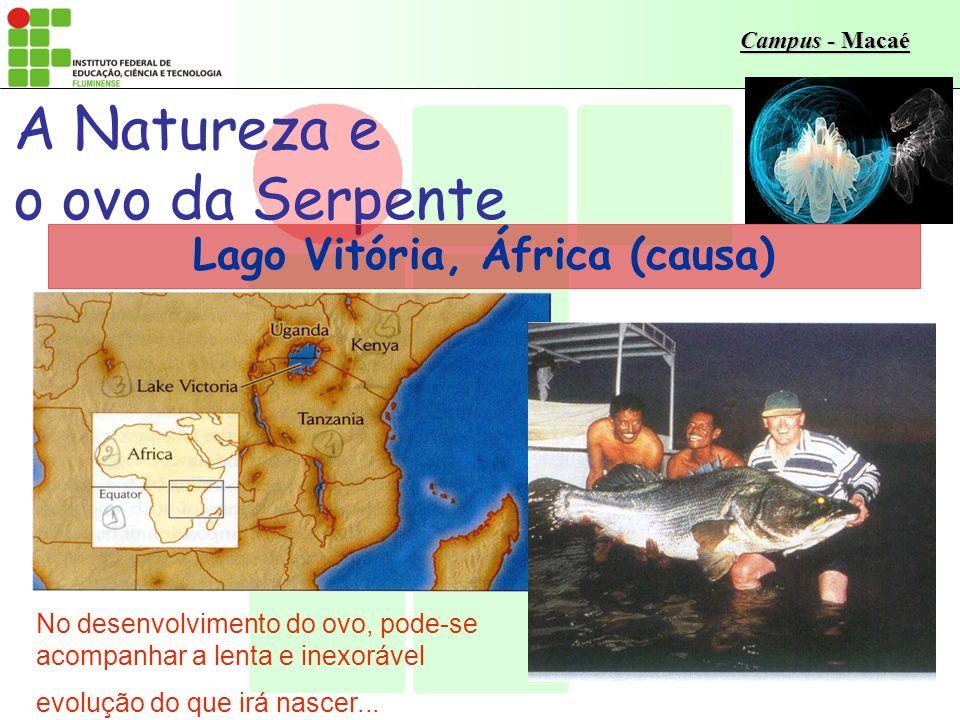 Campus - Macaé A Natureza e o ovo da Serpente Lago Vitória, África (causa) No desenvolvimento do ovo, pode-se acompanhar a lenta e inexorável evolução do que irá nascer...