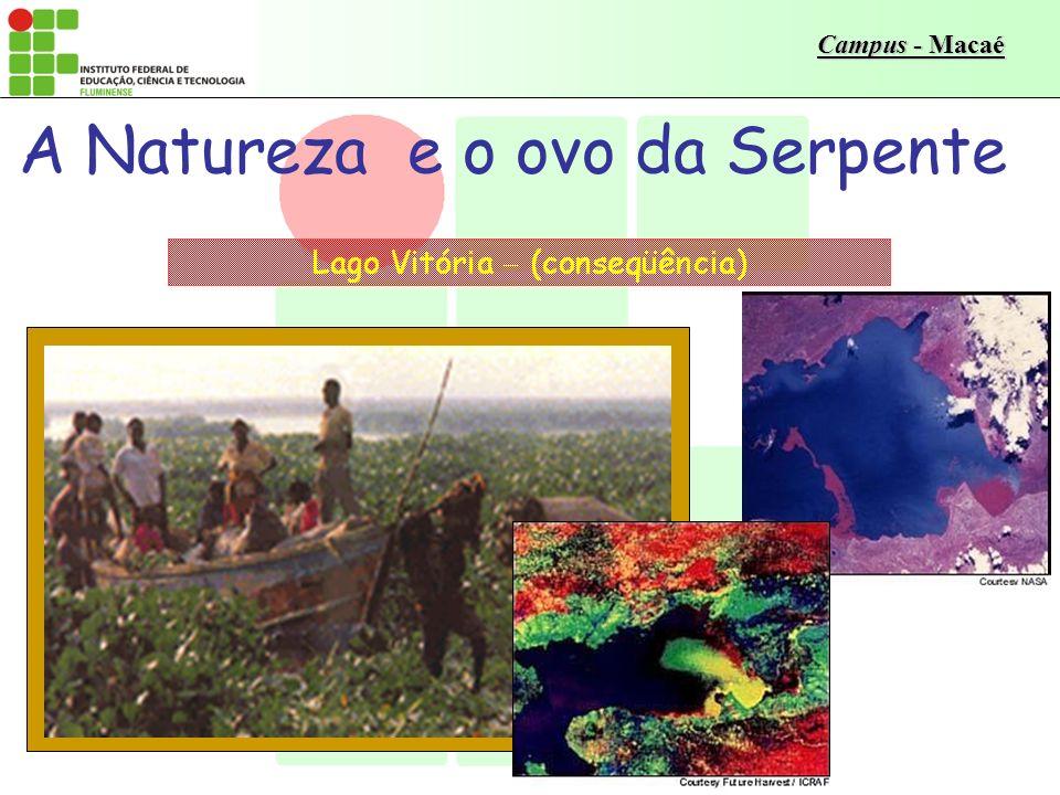Campus - Macaé A Natureza e o ovo da Serpente Lago Vitória, África (causa) No desenvolvimento do ovo, pode-se acompanhar a lenta e inexorável evolução