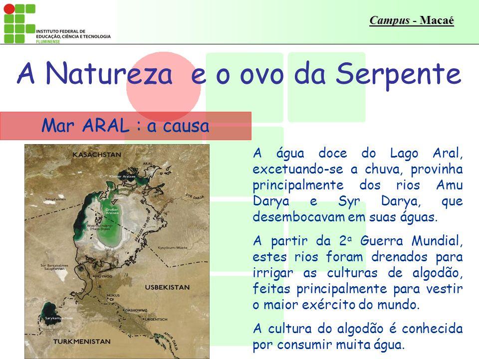 Campus - Macaé Mar ARAL : a causa A água doce do Lago Aral, excetuando-se a chuva, provinha principalmente dos rios Amu Darya e Syr Darya, que desembocavam em suas águas.