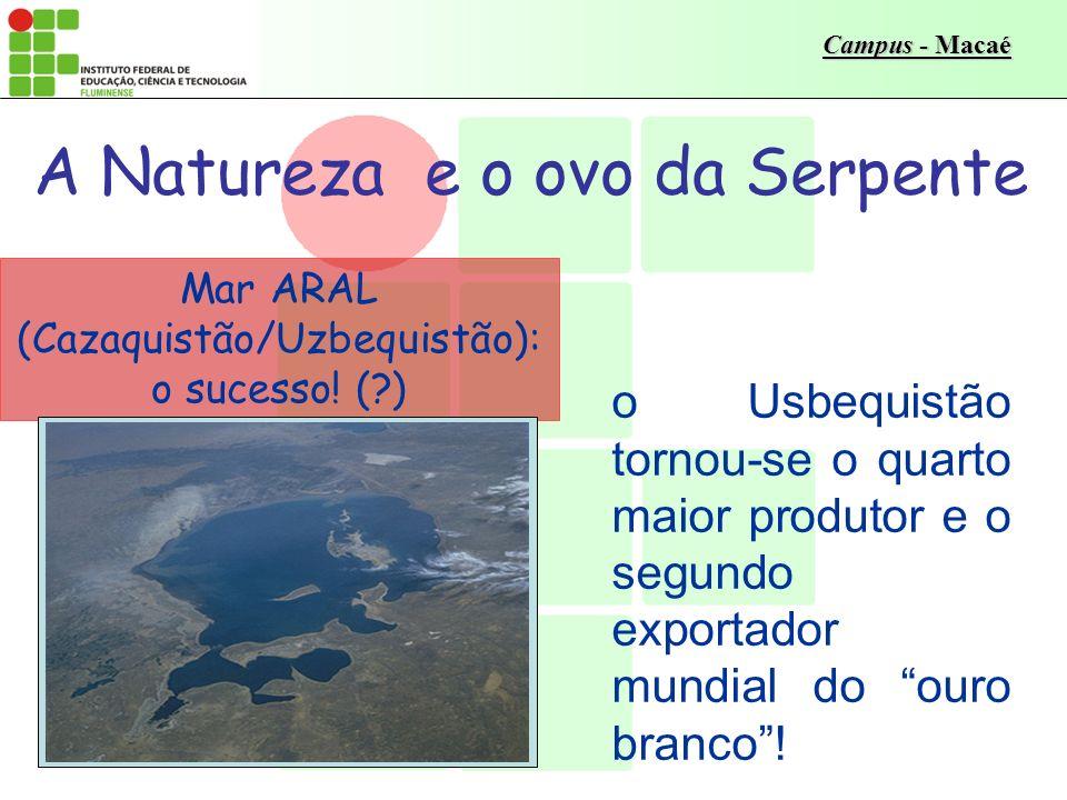 Campus - Macaé Os limites da Terra Principais Componentes da Crise Ambiental População – crescimento Recursos naturais – não-renováveis – renováveis Poluição Fonte: Braga, B.