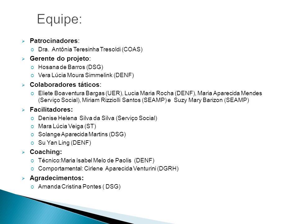 Patrocinadores: oDra. Antônia Teresinha Tresoldi (COAS) Gerente do projeto: oHosana de Barros (DSG) oVera Lúcia Moura Simmelink (DENF) Colaboradores t