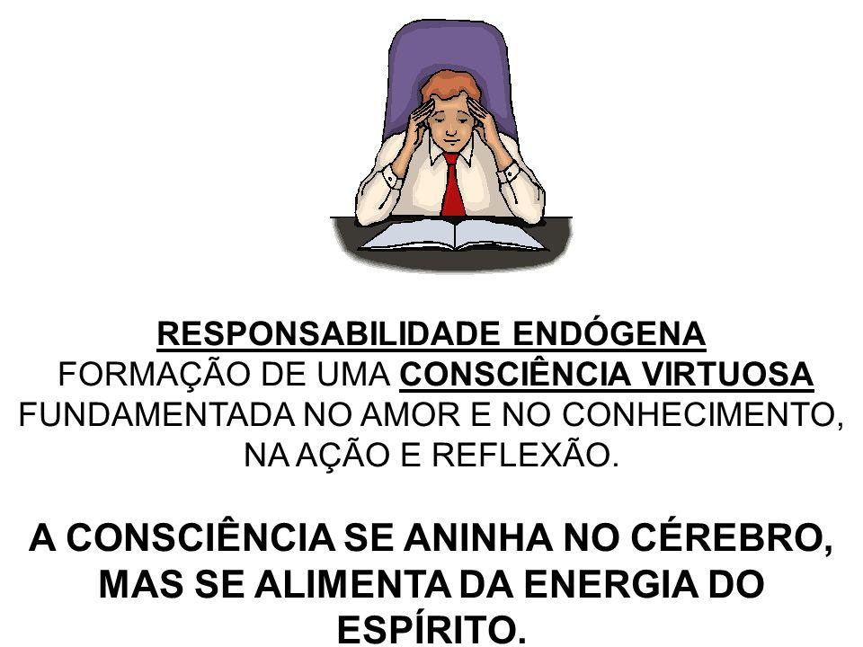 RESPONSABILIDADE EXÓGENA EXIGE COMPORTAMENTO VIRTUOSO EM RELAÇÃO A TERCEIROS.
