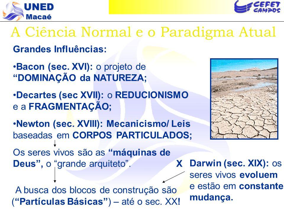 UNED Macaé A Ciência Pós-Moderna Princípios Fundamentais O Princípio de complexidade; O Princípio de emergência; O Princípio de auto- organização; O Princípio de co- evolução.
