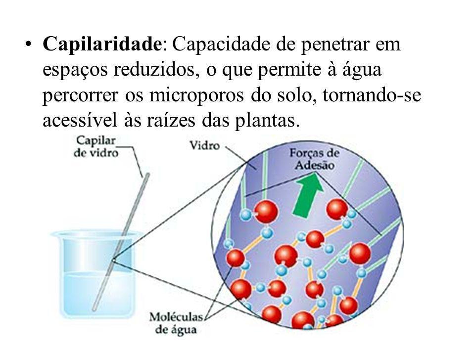 Capilaridade: Capacidade de penetrar em espaços reduzidos, o que permite à água percorrer os microporos do solo, tornando-se acessível às raízes das p