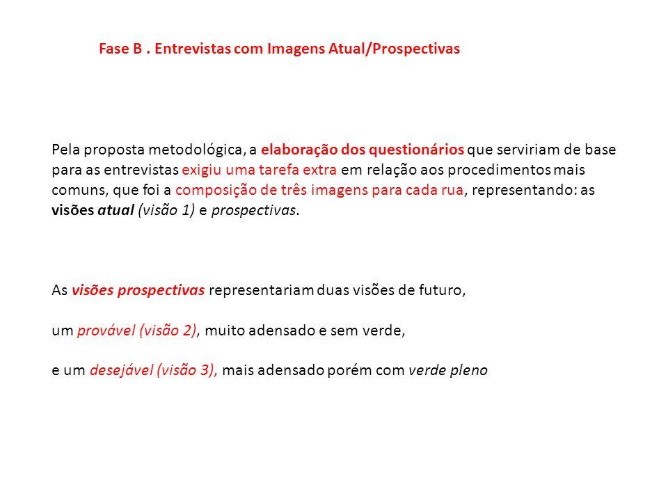 Fase B. Entrevistas com Imagens Atual/Prospectivas Pela proposta metodológica, a elaboração dos questionários que serviriam de base para as entrevista