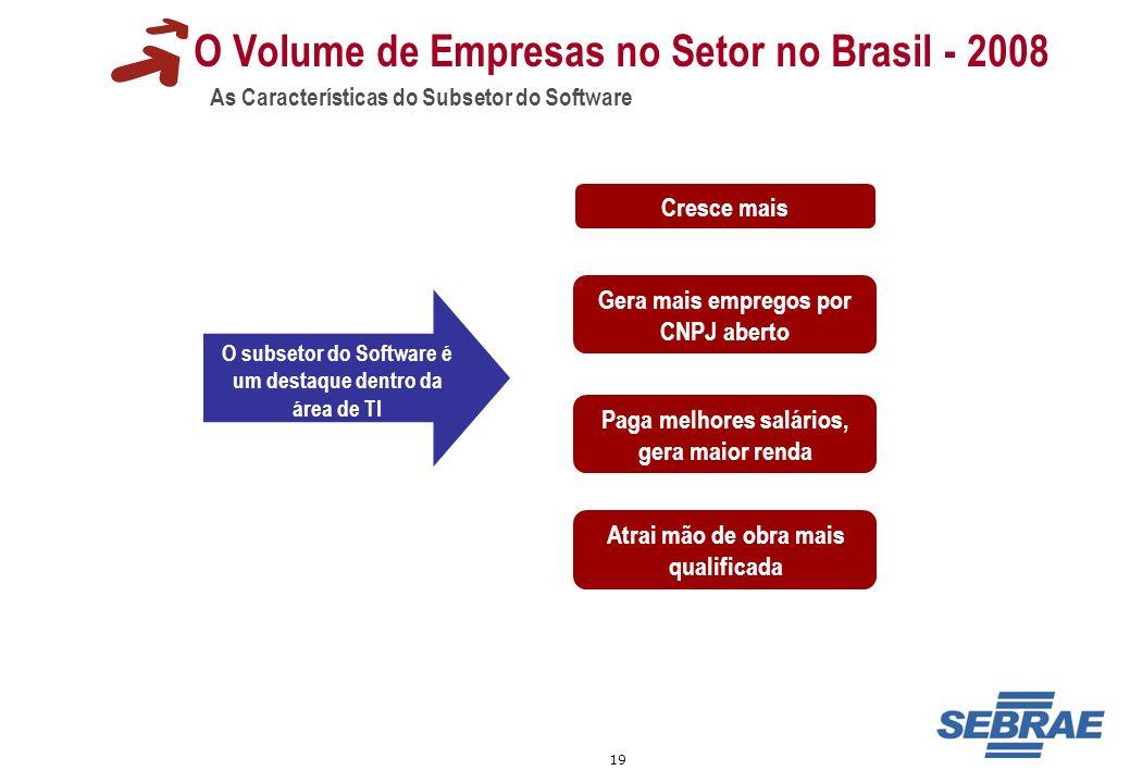 19 O Volume de Empresas no Setor no Brasil - 2008 As Características do Subsetor do Software O subsetor do Software é um destaque dentro da área de TI