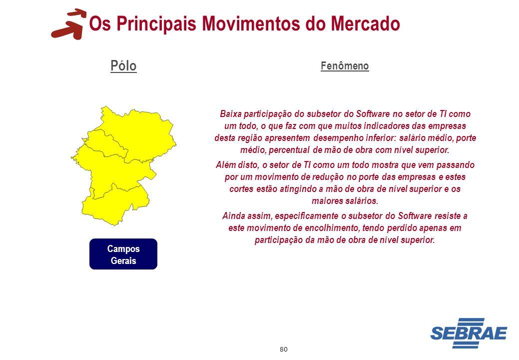 80 Os Principais Movimentos do Mercado Pólo Fenômeno Baixa participação do subsetor do Software no setor de TI como um todo, o que faz com que muitos