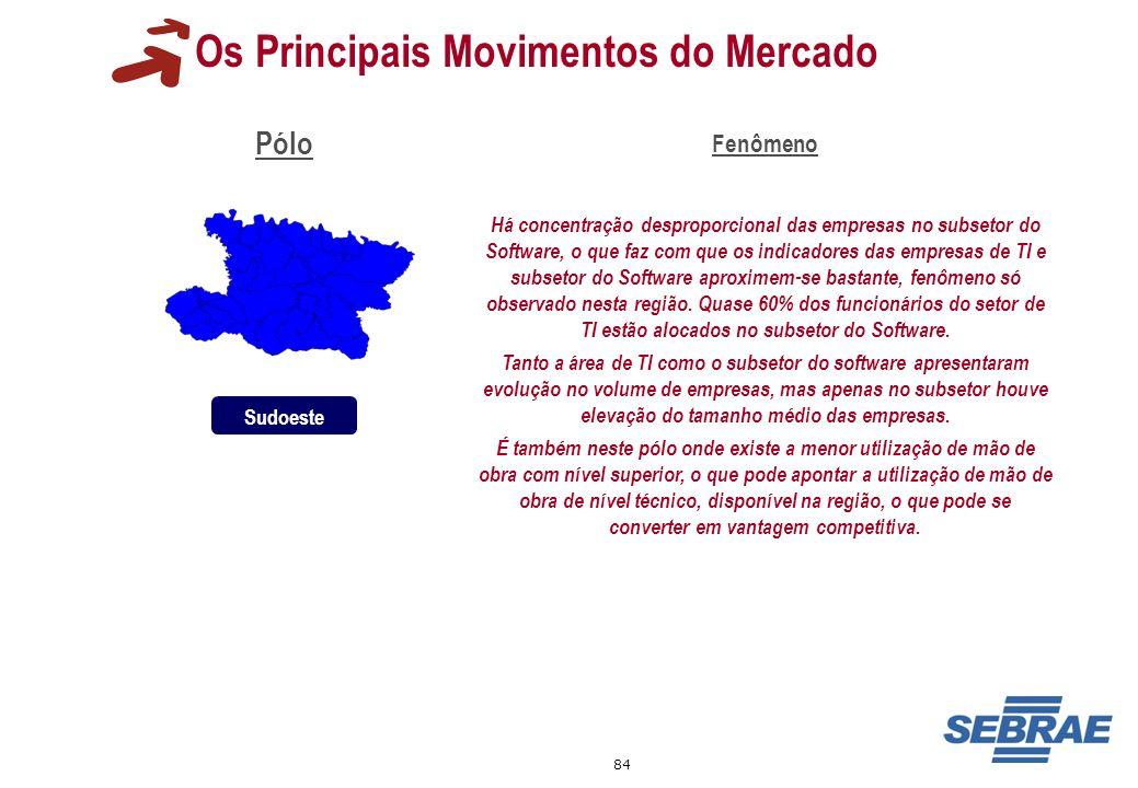 84 Os Principais Movimentos do Mercado Pólo Fenômeno Há concentração desproporcional das empresas no subsetor do Software, o que faz com que os indica