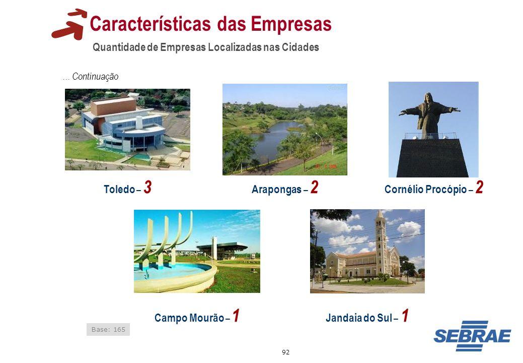 92 Características das Empresas Quantidade de Empresas Localizadas nas Cidades Arapongas – 2 Base: 165 Toledo – 3 Campo Mourão – 1... Continuação Jand