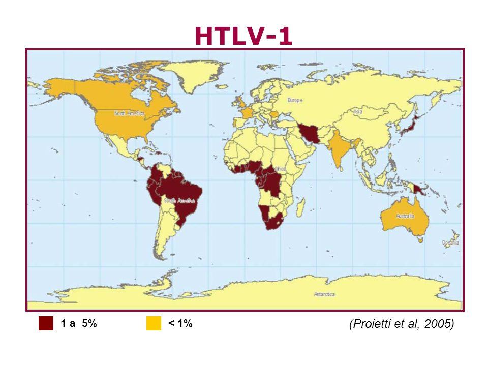 CONSIDERAÇÕES FINAIS A verificação de provável correlação da distribuição geográfica da soropositividade para o HTLV-1/2 com determinantes de posição socioeconômica propiciou a discussão sobre os fatores que podem estar envolvidos na manutenção e transmissão desses vírus na população.