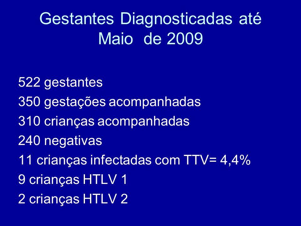 Gestantes Diagnosticadas até Maio de 2009 522 gestantes 350 gestações acompanhadas 310 crianças acompanhadas 240 negativas 11 crianças infectadas com