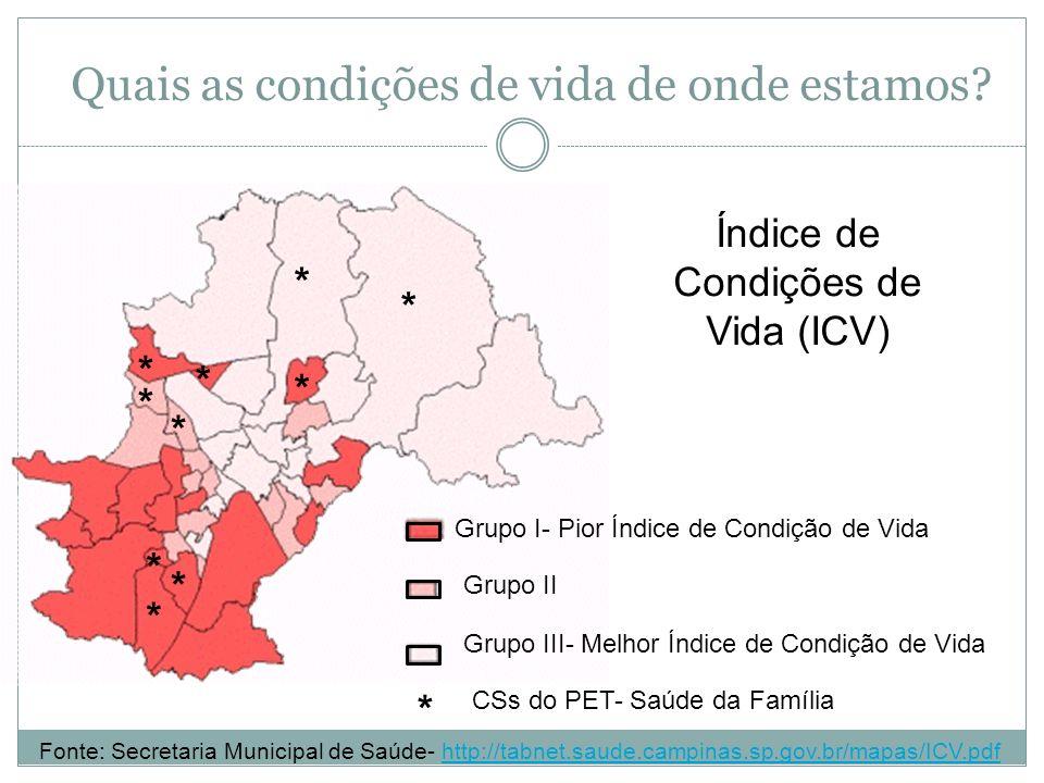 Quais as condições de vida de onde estamos? Grupo I- Pior Índice de Condição de Vida Grupo II Grupo III- Melhor Índice de Condição de Vida * * * * * *