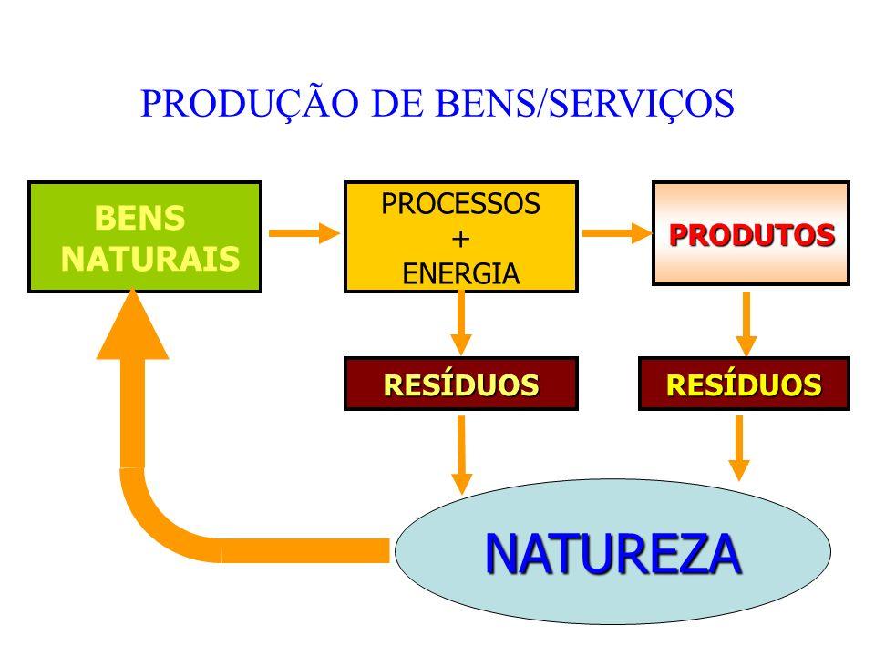 Contabilidade Social e Ambiental Cesar Eduardo Stevens Kroetz Novembro/2009