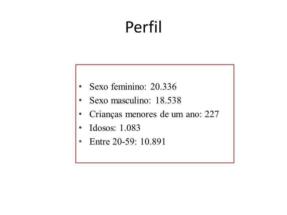 Perfil Sexo feminino: 20.336 Sexo masculino: 18.538 Crianças menores de um ano: 227 Idosos: 1.083 Entre 20-59: 10.891