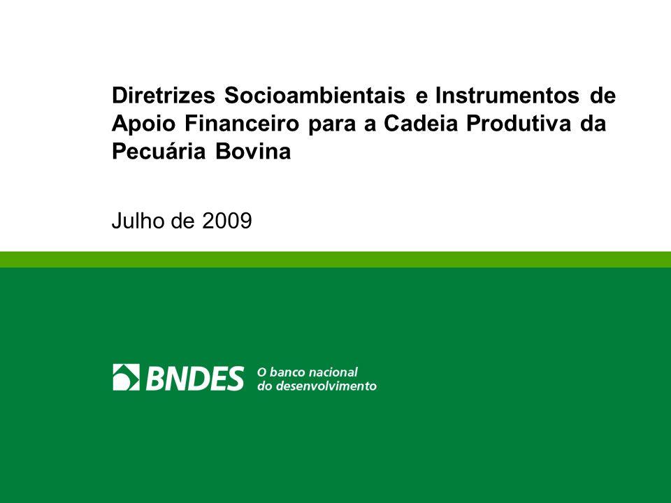 Julho de 2009 Diretrizes Socioambientais e Instrumentos de Apoio Financeiro para a Cadeia Produtiva da Pecuária Bovina
