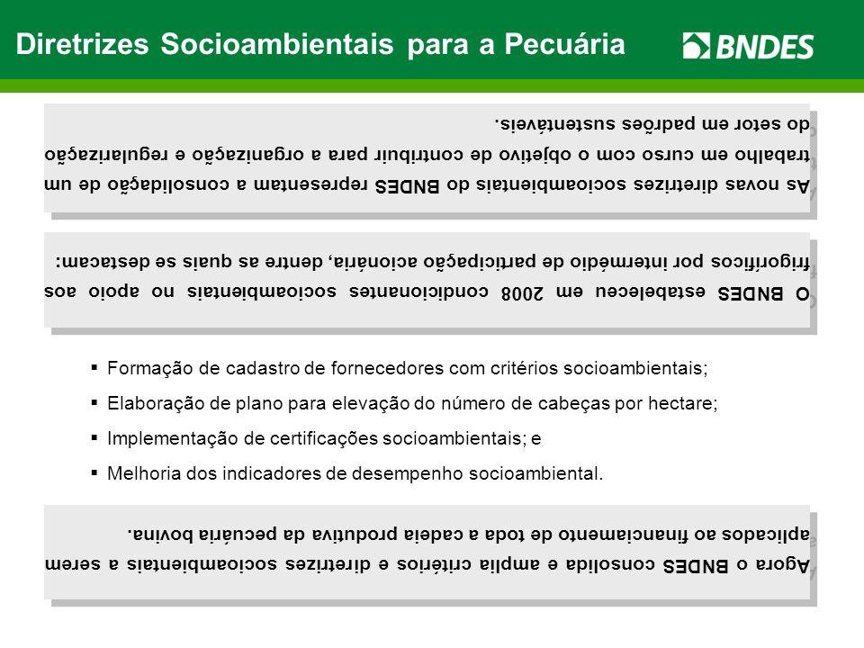 Diretrizes Socioambientais para a Pecuária As novas diretrizes socioambientais do BNDES representam a consolidação de um trabalho em curso com o objetivo de contribuir para a organização e regularização do setor em padrões sustentáveis.