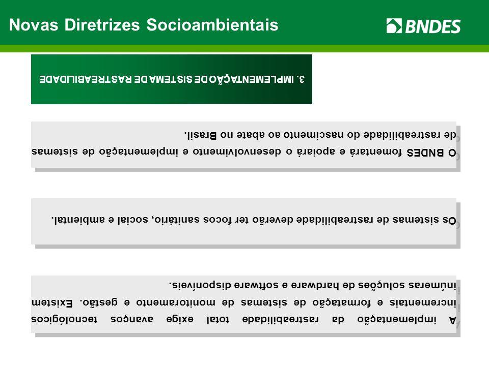 Novas Diretrizes Socioambientais 3.