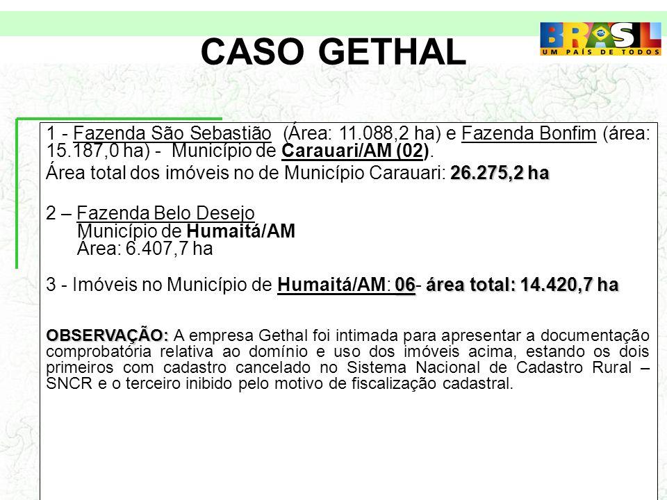 CASO GETHAL 1 - Fazenda São Sebastião (Área: 11.088,2 ha) e Fazenda Bonfim (área: 15.187,0 ha) - Município de Carauari/AM (02).