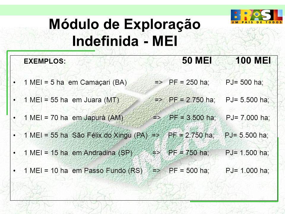 Módulo de Exploração Indefinida - MEI EXEMPLOS: 50 MEI 100 MEI 1 MEI = 5 ha em Camaçari (BA) => PF = 250 ha; PJ= 500 ha; 1 MEI = 55 ha em Juara (MT) => PF = 2.750 ha; PJ= 5.500 ha; 1 MEI = 70 ha em Japurá (AM) => PF = 3.500 ha; PJ= 7.000 ha; 1 MEI = 55 ha São Félix do Xingu (PA) => PF = 2.750 ha; PJ= 5.500 ha; 1 MEI = 15 ha em Andradina (SP) => PF = 750 ha; PJ= 1.500 ha; 1 MEI = 10 ha em Passo Fundo (RS) => PF = 500 ha; PJ= 1.000 ha;