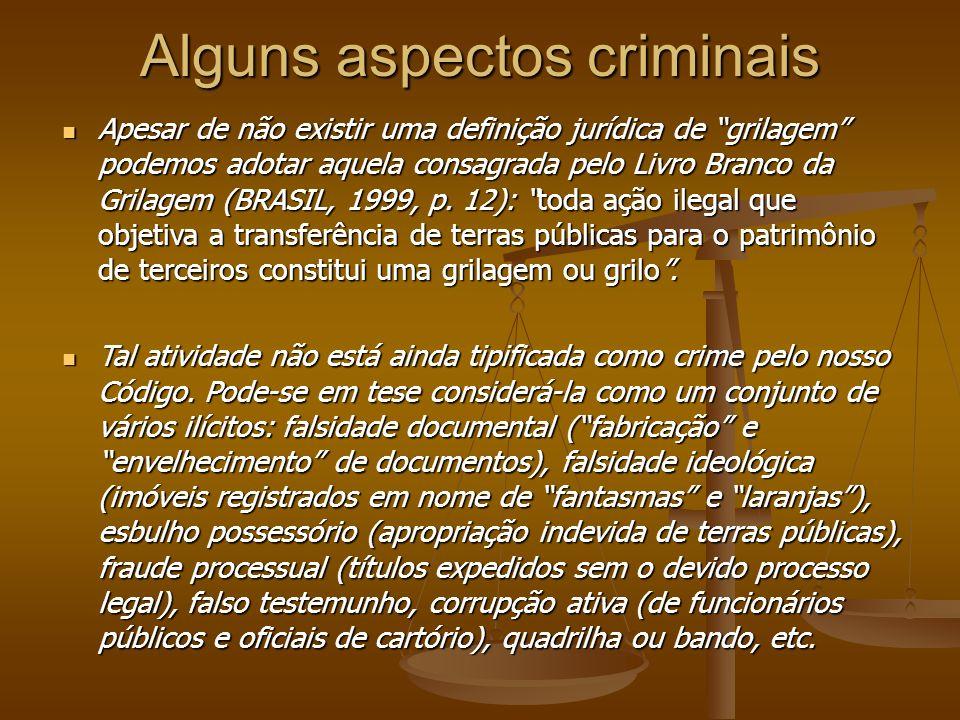 Alguns aspectos criminais Apesar de não existir uma definição jurídica de grilagem podemos adotar aquela consagrada pelo Livro Branco da Grilagem (BRASIL, 1999, p.