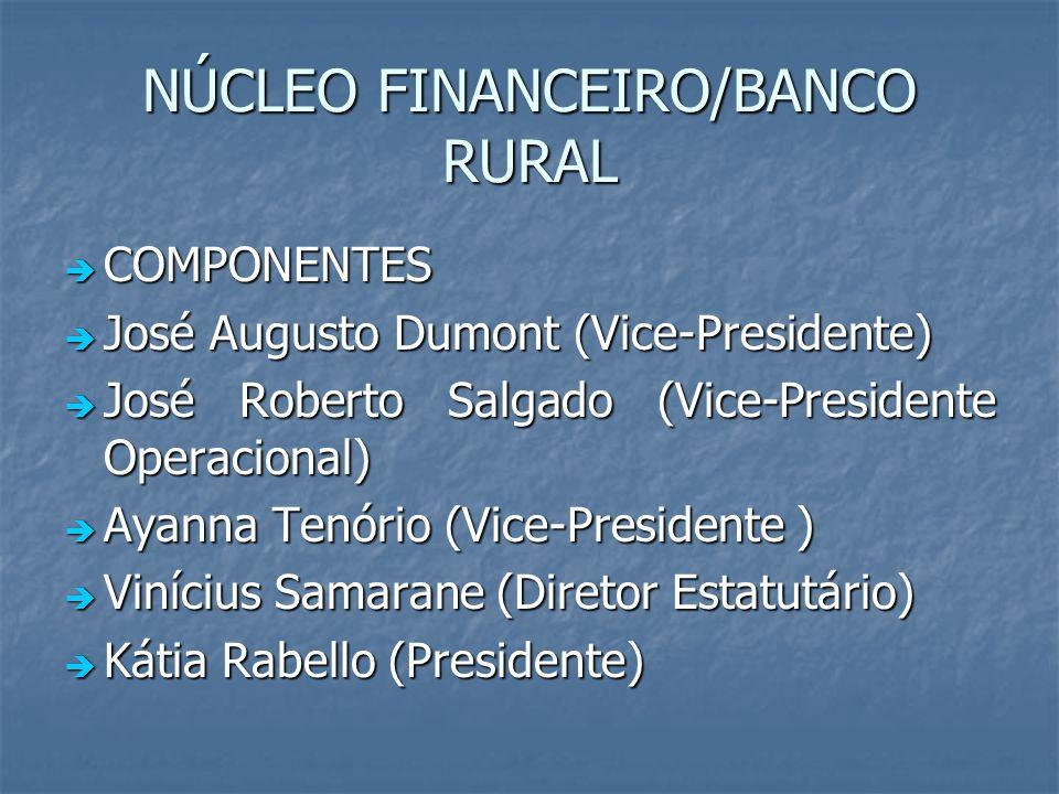 NÚCLEO FINANCEIRO/BANCO RURAL COMPONENTES COMPONENTES José Augusto Dumont (Vice-Presidente) José Augusto Dumont (Vice-Presidente) José Roberto Salgado