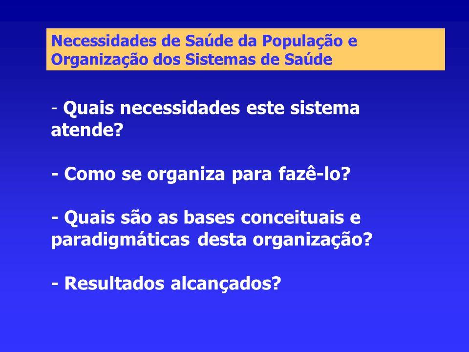 - Quais necessidades este sistema atende? - Como se organiza para fazê-lo? - Quais são as bases conceituais e paradigmáticas desta organização? - Resu