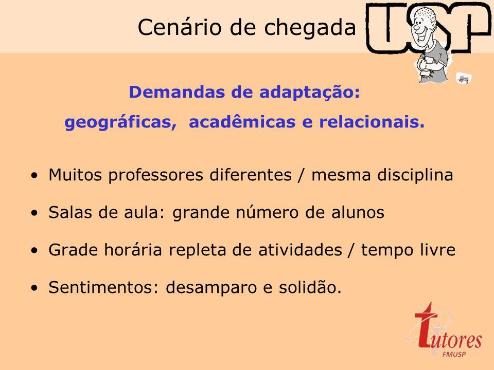 Cenário de chegada Demandas de adaptação: geográficas, acadêmicas e relacionais. Muitos professores diferentes / mesma disciplina Salas de aula: grand