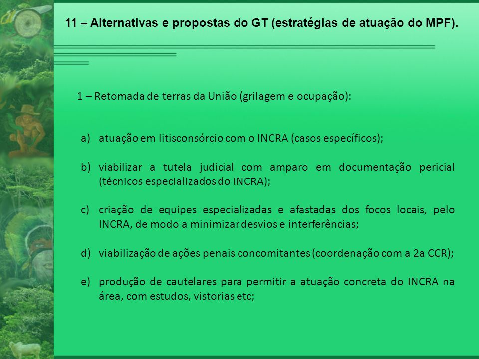 1 – Retomada de terras da União (grilagem e ocupação): a)atuação em litisconsórcio com o INCRA (casos específicos); b)viabilizar a tutela judicial com