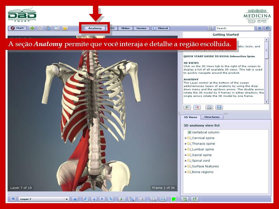 A tag 3D Views apresenta uma relação de áreas específicas disponíveis no presente título.
