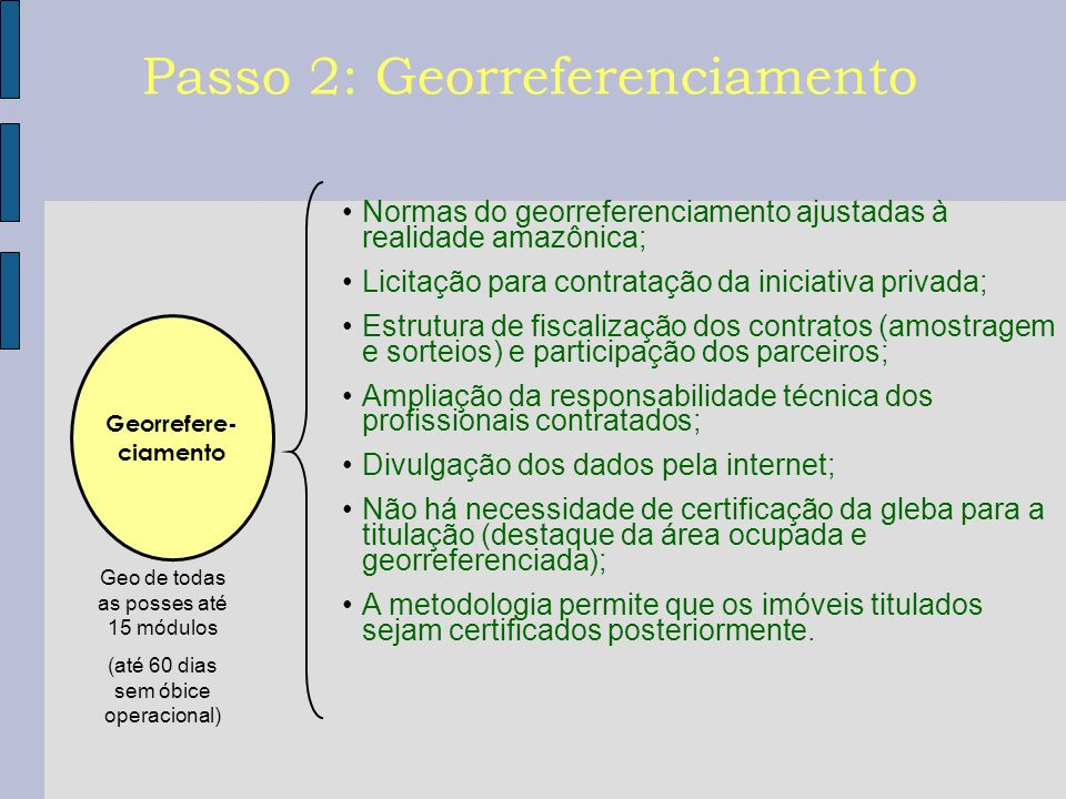 Georrefere- ciamento Geo de todas as posses até 15 módulos (até 60 dias sem óbice operacional) Passo 2: Georreferenciamento Normas do georreferenciame