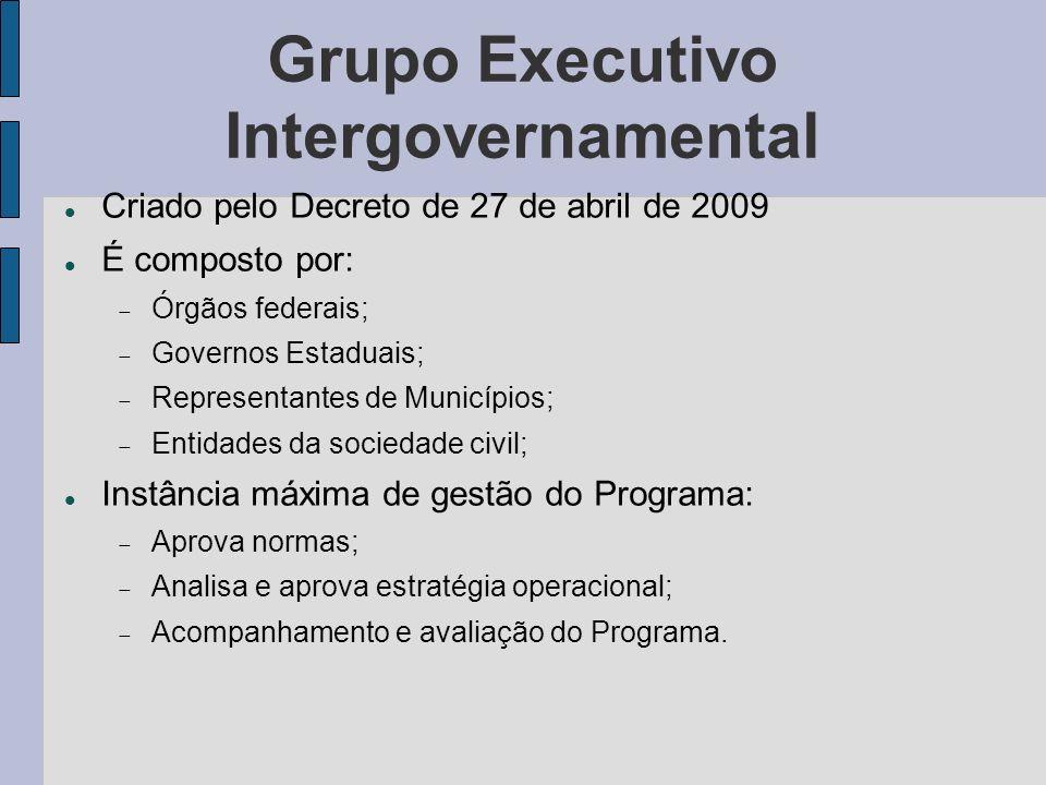 Grupo Executivo Intergovernamental Criado pelo Decreto de 27 de abril de 2009 É composto por: Órgãos federais; Governos Estaduais; Representantes de M