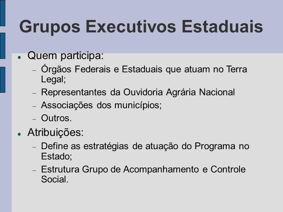Grupos Executivos Estaduais Quem participa: Órgãos Federais e Estaduais que atuam no Terra Legal; Representantes da Ouvidoria Agrária Nacional Associa