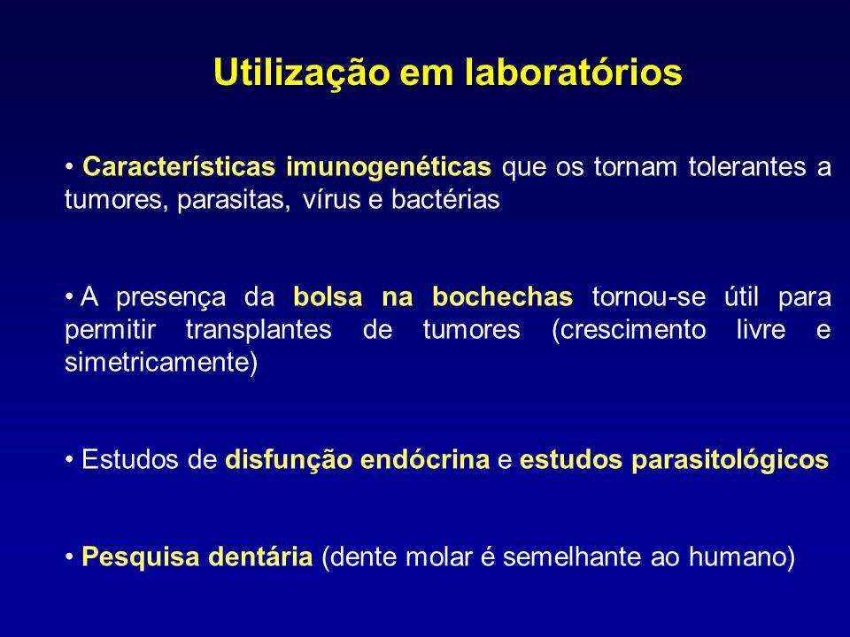 Utilização em laboratórios Características imunogenéticas que os tornam tolerantes a tumores, parasitas, vírus e bactérias A presença da bolsa na boch